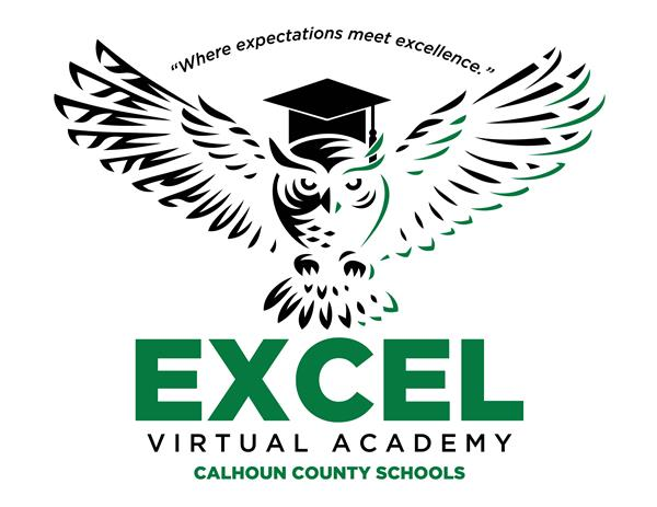 EXCEL Virtual Academy