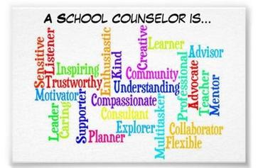 A School Counselor